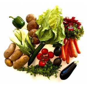 Panier 10 Légumes
